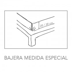 Bajera Alto Especial BASIC LISA
